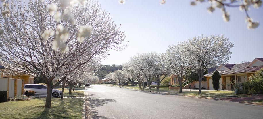 NSW Planning Portal