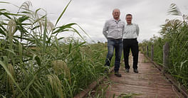 Council Awarded Grant To Enhance Campbells Wetland