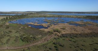 Proposed Renaming - Campbell's Swamp, Nericon Swamp, And Tharbogang Wetlands